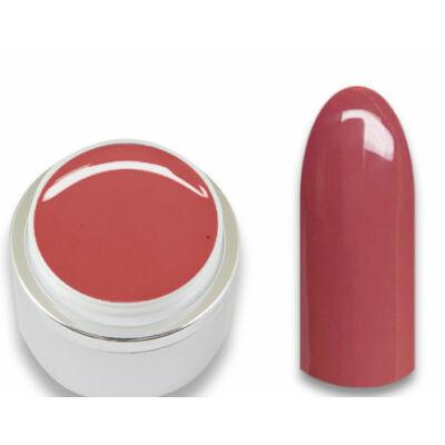 Professional Line - Meztelen Szépség színes zselé Nr.142